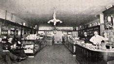 První lékárna v Litvínově