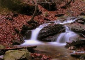 Který potok neprotéká Litvínovem ?