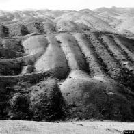 """Během několika málo let, se krajina rybníků a mokřadů i malých a větších lidských sídel proměnila v """"měsíční krajinu""""..."""