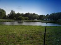 Chovné rybníky u lomské silnice