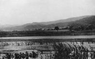 Brodní rybník, německy zvaný Schwem-teich nebo Paulschachtteich, vyplňoval plochu nedaleko dolu Pavel I blíže k silnici Litvínov-Lom. Na snímku pohled od východu směrem k Hornímu Litvínovu v roce 1925