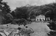 Park a arboretum.