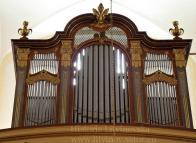 Nynější varhany byly pořízeny v roce 1908 od firmy Bratří Riegrových z Krnova ve východním Slezku za 3120 zlatých