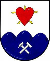 Ve stříbrném štítě nad modrým trojvrším se zkříženými stříbrnými hornickými kladívky červené srdce hořící dokola pěti zlatými plamínky. Mariánské Radčice získaly právo užívat obecní znak a vlajku na základě rozhodnutí  dne 13. 11. 2002.