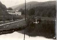 Tento rybníček na starých mapách nesl jméno Hammer Muhl Teich - Hamerský mlynářský rybník a nacházel se za Hamerskou pilou (mlýn č.5). Snímek kolem r.1910. Muzeum Most