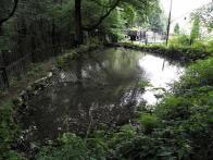 Mlýnský rybníček v areálu Pily a hračkárny Marzin.  2010.
