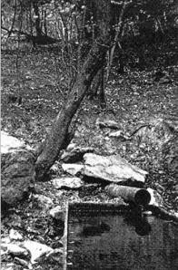 Suťový pramen na Zlatníku u Obrnic je využíván k napájení dobytka