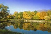 Pilařský rybník v 90.letech 20.století