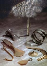 Ukázka části nálezu bronzových seker s laloky ze Saběnic, který patří k nejdůležitějším hromadným nálezům bronzu. Postupně v letech 1902,1904 a 1905 nalezl majitel pozemku v Saběnicích při odkopávání nivní půdy celkem 90 bronzových seker se středními laloky. Všechny nálezy byly uloženy v objemných keramických nádobách - zásobnicích, z nichž se zachovaly pouze zlomky. Jsou spolehlivě datovány na přelom střední a mladší doby bronzové, tedy okolo 1200 př. n. I. Podstatná část nálezu se dodnes dochovala v Oblastním muzeu v Mostě.
