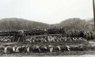 Pohřeb některých obětí náletu z 12. května 1944, spojený s tryznou na hřbitově v Hamru u Litvínova