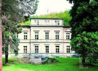 Rieckenova vila, čelní pohled - od západu
