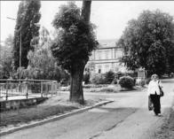 Začátek aleje Ke Střelnici - nad poliklinikou