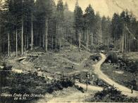 Přípravné práce-mýcení lesa.