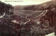 Hamerské údolí,jak jej už po generace nikdo nezná-bez přehrady.