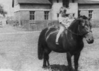 Zachovalo se málo snímků z Rafandy. Za tento pohodový z počátku 50. let vděčíme Janu Martínkovi, který sedí na poníku. Budova v pozadí připomíná stanici