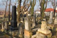 Židovský hřbitov v Souši