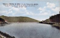 """Přehrada na kolorované fotografii z cca r.1910 i s """"tétédéčkama"""" """"Hamerská přehrada u Mostu z vodní strany"""""""