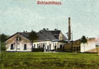 Rok 1907