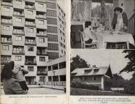 Pět mladých let od Dalibora Kozla z roku 1954