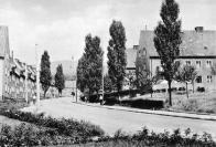 Neumanna patří k urbanisticky nejhodnotnější části Osady. Pohled do ulice v roce 1961