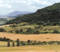 Národní přírodní památka Jánský vrch