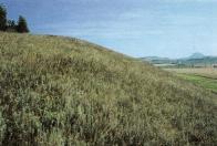 Přírodní rezervace Chloumek