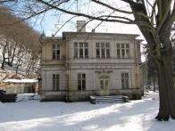 Rieckenova vila